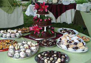 A beautiful layout of gourmet chocolate delicacies created and catered by the Truffle Shop in Nevada City for a Hawaiian-themed wedding in Grass Valley, CA